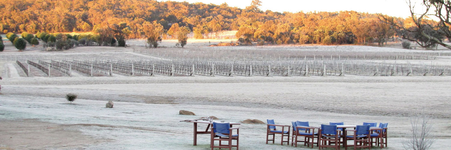 Savina Lane Wines - Winter