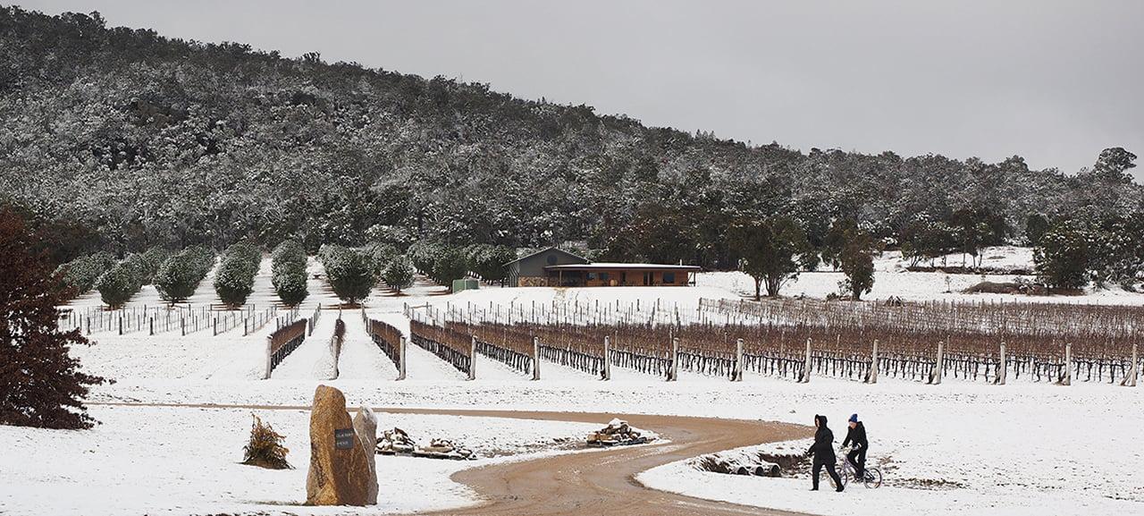 savina lane winter snow